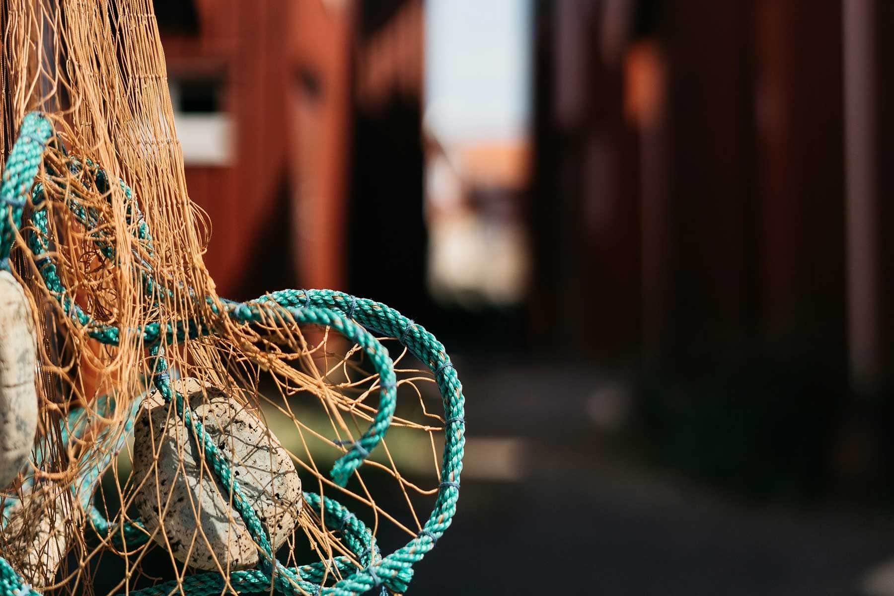 Fiske-på-Västkusten-i-Sverige-med-Nygren-Lind-Resebyrå