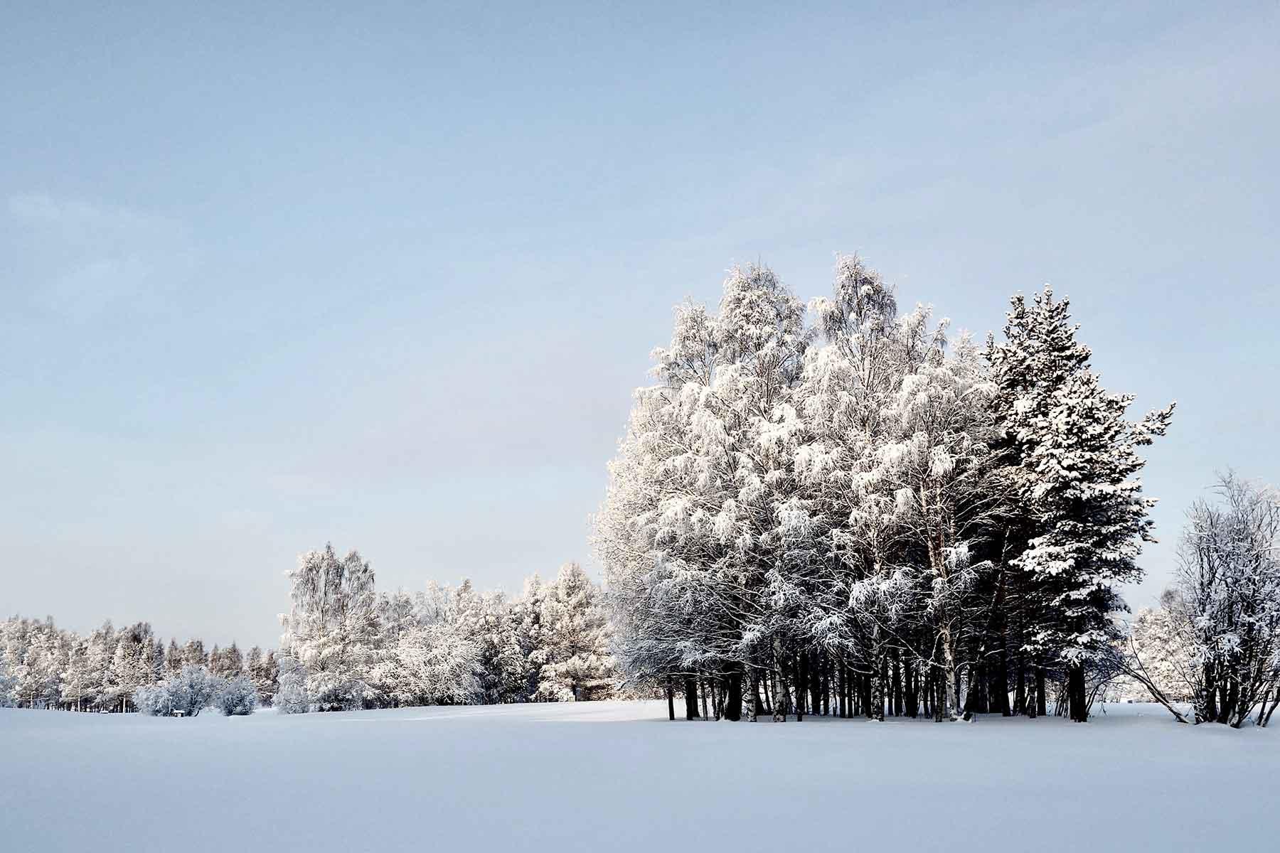 Resor-Norrland-Nygren-Lind-Resebyrå