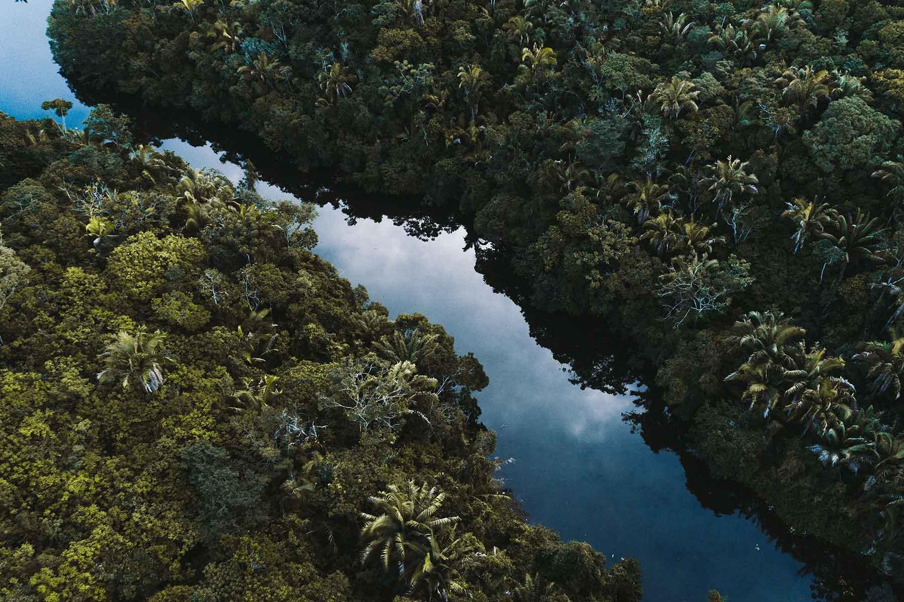 Resor-till-Brasilien-med-Nygren-&-Lind-Resebyrå---amazon