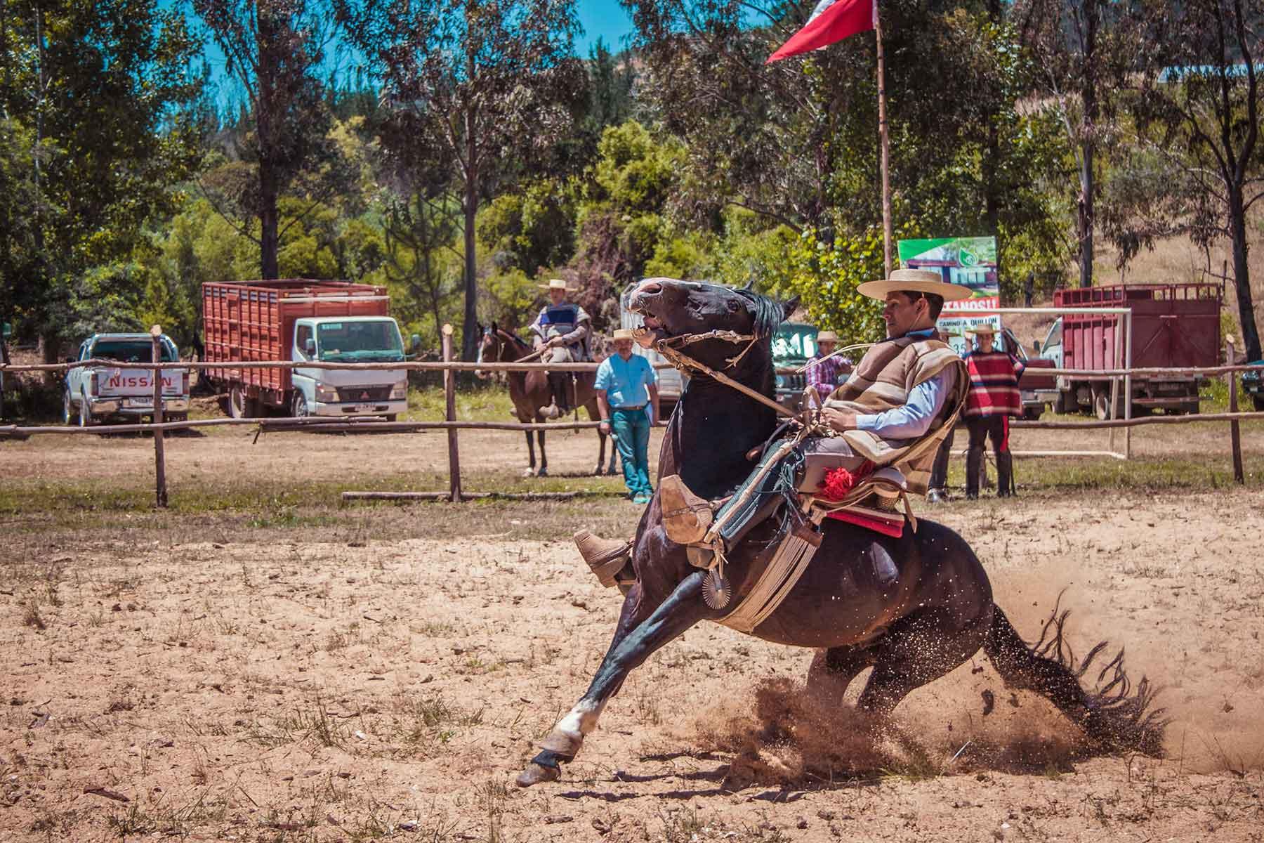 Resor-till-Chile-med-Nygren-&-Lind-resebyrå---chilener-på-hästryggen