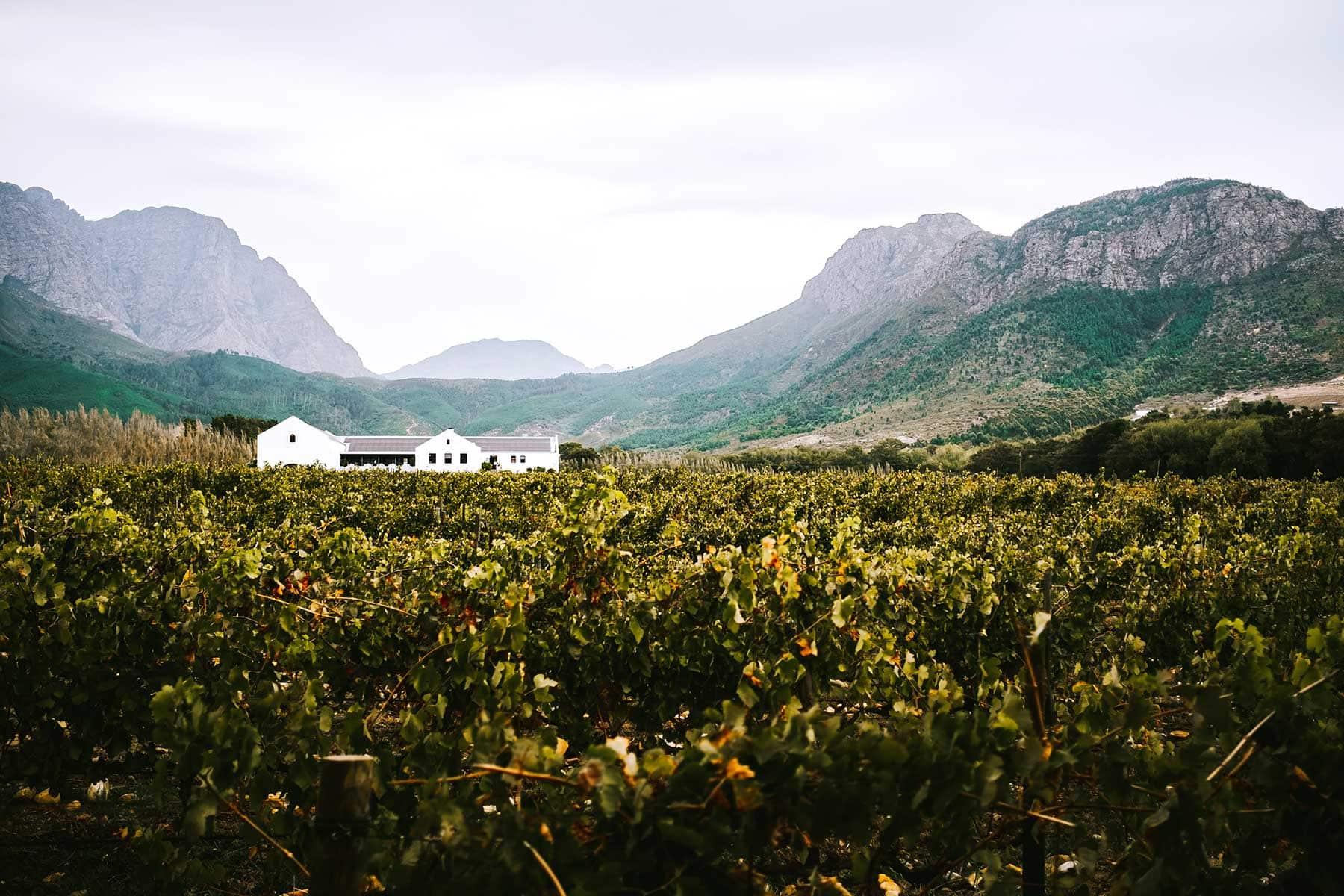 Resor-till-Kapstaden-med-Nygren-&-Lind-Resebyrå---franshhoeuk
