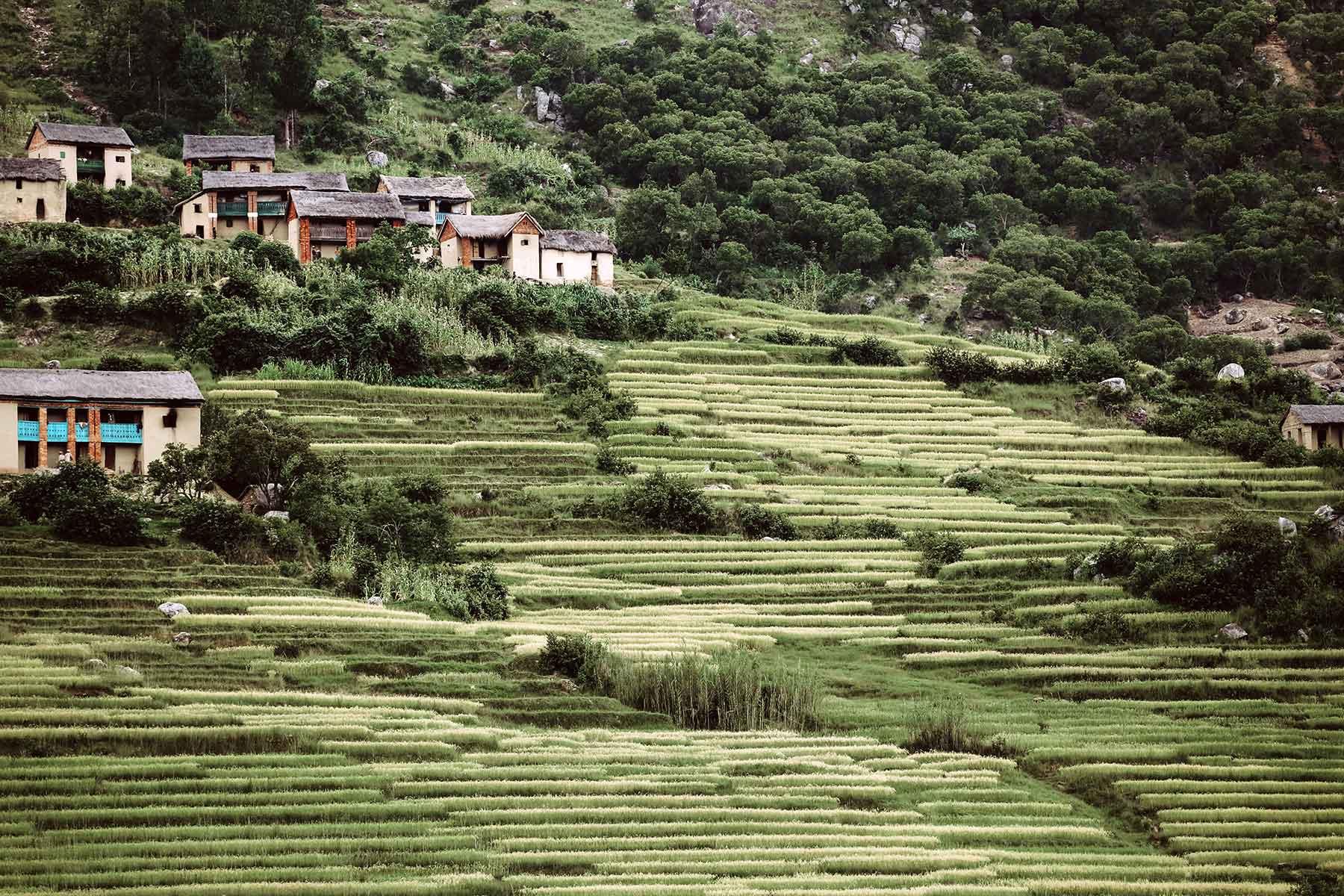 Resor-till-Madagaskar---landskap---Nygren-Lind-Resebyrå