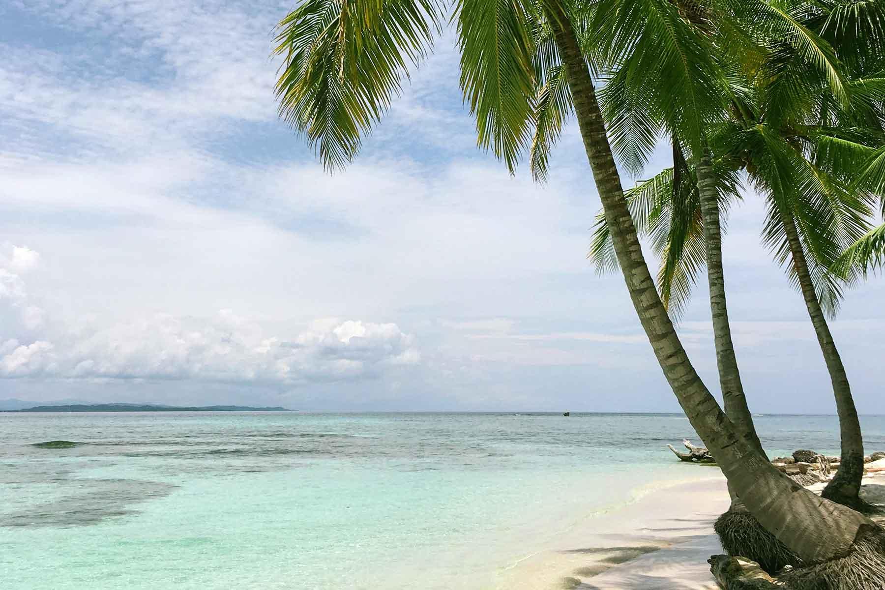 Resor-till-Panama-med-Nygren-&-LInd-Resebyrå---strand-och-palmer