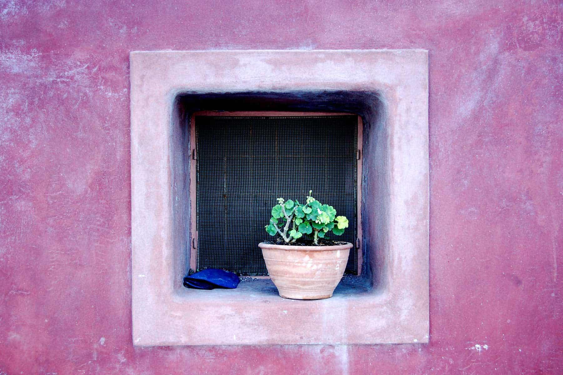 Resor-till-Spetses-i-Grekland-med-Nygren-&-Lind-Resebyrå_5