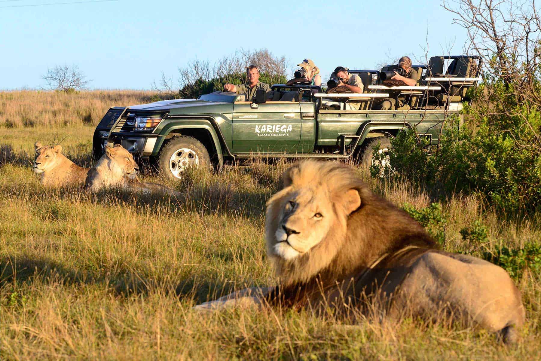 Safariresor-till-Kariega-Games-i-Sydafrika-med-boende-på-Settler-med-Nygren-&-Lind-Resebyrå