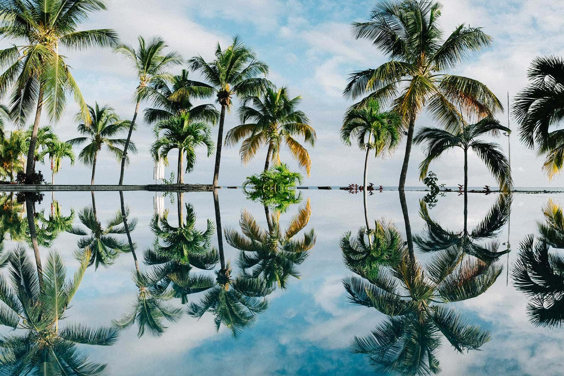 Trips-to-Mauritius-Nygren-&-Lind-Travel-agency---pool-and-palms